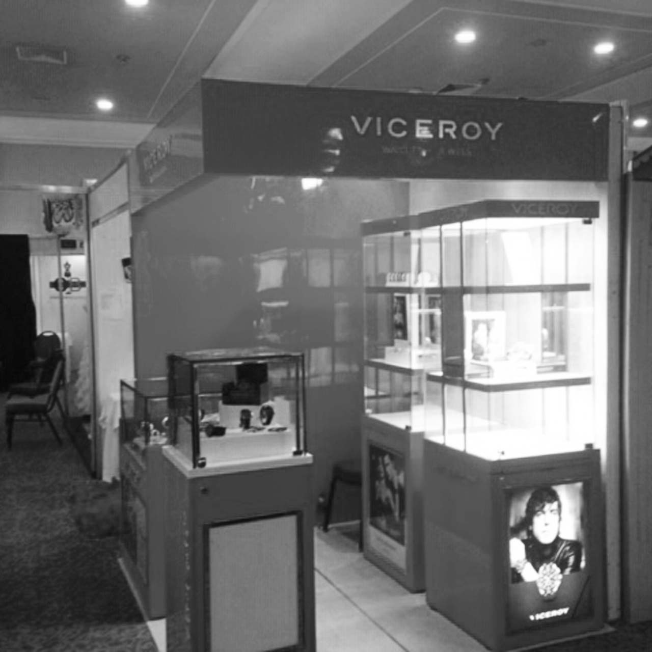 Proyecto7 Viceroy